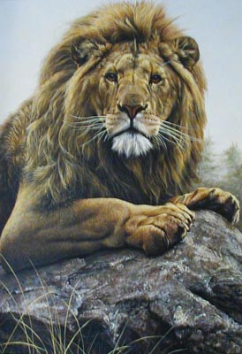 Lion - Painting by Alan Hunt