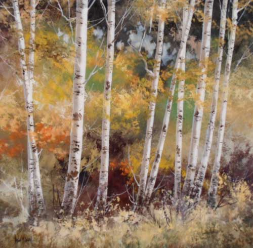 Silver Birches - Painting by Allan Morgan