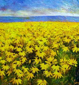 Field of Rudbeckia - Painting by Carl Scanes