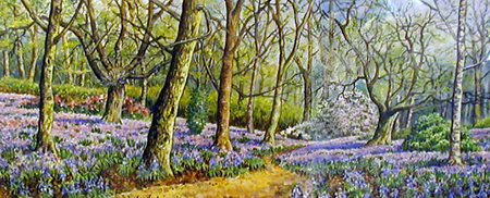 New Forest Bluebells - Painting by John Dimech