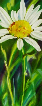 Daisy - Painting by Sean Curley